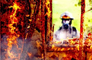 firefighter460